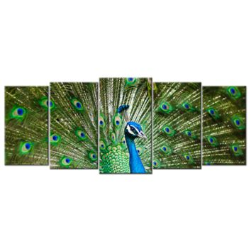 Peacock, Five Panel, Extra Large(XL) Canvas Wall Art