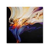 "'Evoke' by Cody Hooper Ready to Hang Canvas Wall Art (35""x35"")"