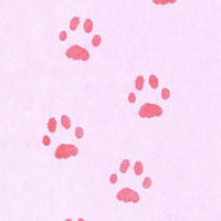 Cat Paw Print Rubber Stamp, Siamese cat paw print, custom carved rubber stamp animal paw print