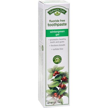 Nature's Gate Natural Toothpaste Gel Flouride Free Wintergreen - 5 oz