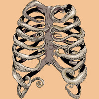 Your Rib is an Octopus Art Print by Huebucket