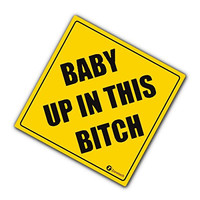 Baby Up In This Bitch REFLECTIVE Decal funny vinyl decals bumper stickers