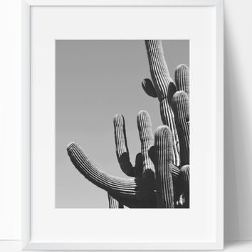Cactus Art Photography, Black and White Modern Art, Prints