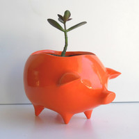 Ceramic Pig Planter Vintage Design in Orange by fruitflypie