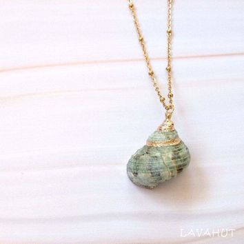 Green Turbo Seashell Pendant w/ Gold Necklace
