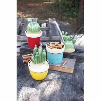 Set Of 3 Cactus Canisters - One Each Color