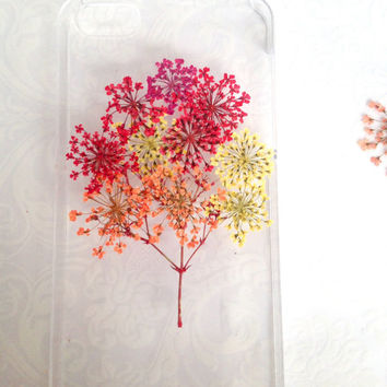 Handmade Real  Natural Pressed Flowers iphone 6 6 plus case iphone 4s 5 5s 5c case  Samsung case fashion cellphone colorful tree