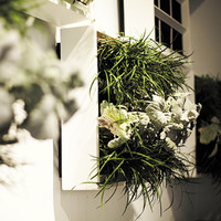 Living Wall Planter - White