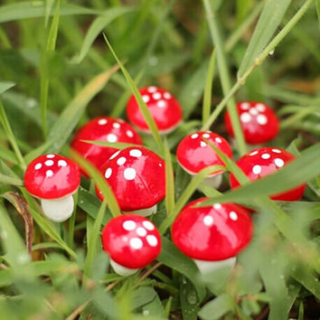 10Pcs Mini Red Mushroom Garden Ornament Miniature Plant Pots Fairy DIY Dollhouse