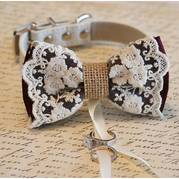 Marsala Lace Dog Bow Tie ring bearer, Pet wedding accessory