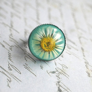 Real Daisy Ring Real Flower 01 Resin Ring Botanical Turquoise White Daisy Spring Green Nature Specimen Jewelry