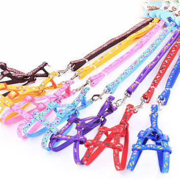 Free shipping Adjustable New printing Nylon Pet Cat Doggie Puppy Leashes Lead Harness Belt Rope Hot colorful PG41