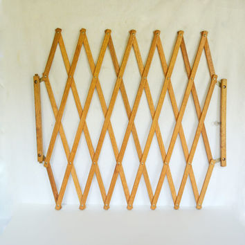 Shop Expandable Gates On Wanelo
