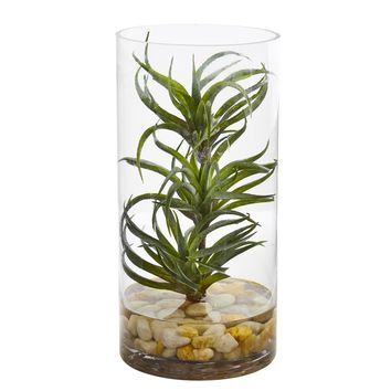 Artificial Plant -Air Plant Succulent with Glass Vase
