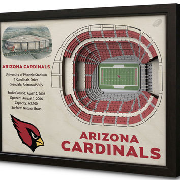 NFL Arizona Cardinals Football 3D Stadium View Wall Art University of Phoenix