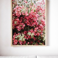 INSTANT DOWNLOAD PRINT, Floral Bougainvillea Art Print, Nature Print Photo, Nature Photography, Minimal Modern Photography