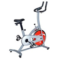 Sunny Health & Fitness Indoor Cycling Bike (Grey)