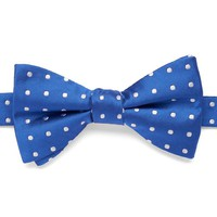 Bow Tie Tuesday Dot Pretied Bow Tie - Men, Size: One
