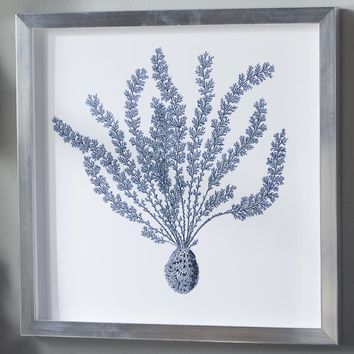 Indigo Coral Shadow Box II