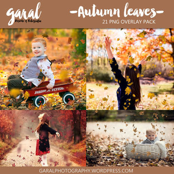 AUTUMN LEAVES Photoshop Overlays, 21 PNG files pack, falling autumn tree leaves effect, photoshop overlay autumn, fall overlays
