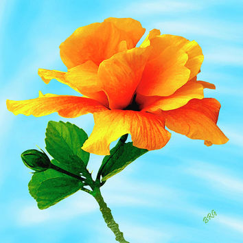 Pleasure - Yellow Double Hibiscus by Ben and Raisa Gertsberg