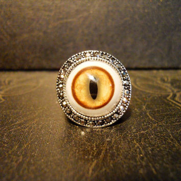 Big Bad Kitty Bobcat Eye Taxidermy Glass Eye Ring sz7