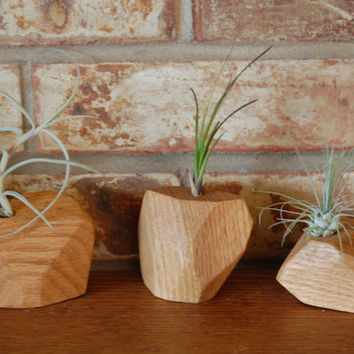 Air Plant Holder, Geometric air plant holder, Geometric, Air Plant, Wood Planter, Faceted
