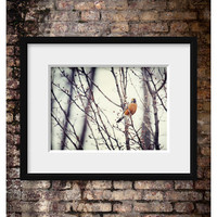 Bird Art - Bird Picture - Spring Robin - Bird Print - Nature Wall Art - Brown, Cream, Tan, Beige, Or | Luulla