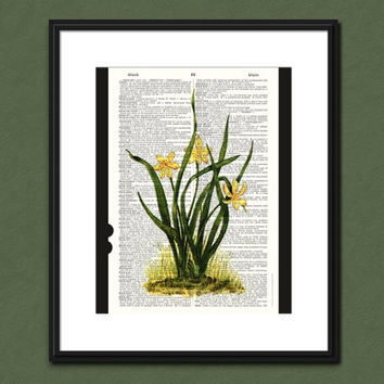 ANTIQUE BOTANICAL PRINT Reproduction Vintage Dictionary Page Art Upcycled Home Decor Flowers Print Office Art Nature Art Botany Illustration