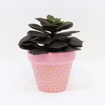 Terracotta Pot, Succulent Planter, Cute Planter, Small Pot, Pink Planter, Air Plant Holder, Succulent Pot, Indoor Planter, Gold Dots