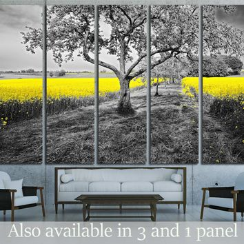 Shining yellow oilseed rape fields in a black and white landscape   №2684