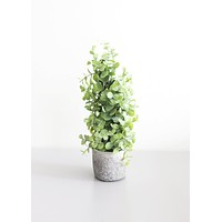 """Eucalyptus Potted Artificial Plant in Pot - 12.5"""" Tall"""