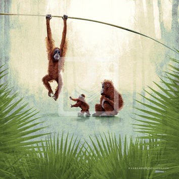 Jungle Safari Monkey Family Animal 10x10 Giclee Canvas Wall Art Decor Room Print by Caramel Expressions - FREE Shipping