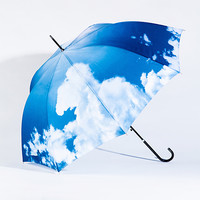 sky - the umbrella