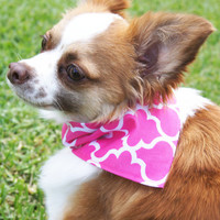 Pink Lattice Dog Bandanna