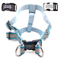 Personalized Lazer Engraved Buckle Dog Harness -  8 Reflective colors to choose from