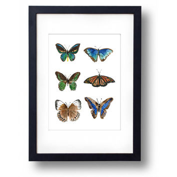 Butteries art print, print of watercolor painting of six butterflies, nature art, wall art, paper size A3, butteries art