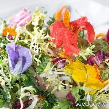 Edible Flower Mix Heirloom Seeds - Non-GMO, Open Pollinated, Untreated