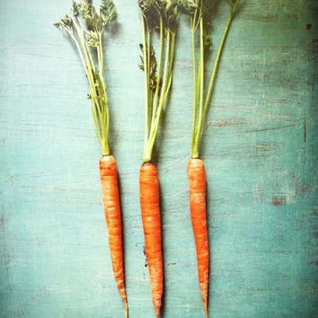 Orange vegetable garden print . aqua turquoise kitchen art . fresh . rustic summer home decor . modern food photography . Three Carrots