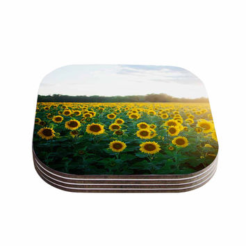 "Chelsea Victoria ""Sunflower Fields"" Floral Photography Coasters (Set of 4)"