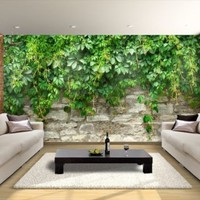 Wall removable sticker green grape mural