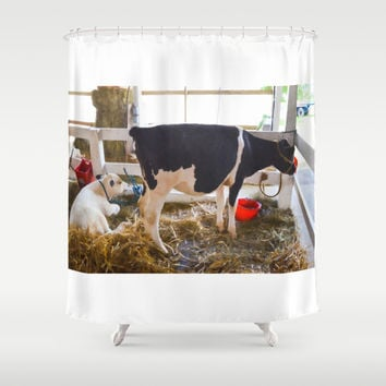 Cow and little calf 1 Shower Curtain by Lanjee