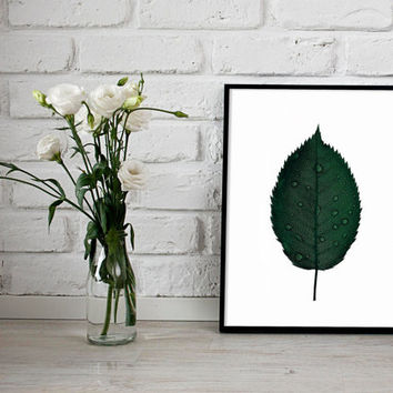 Leaf Print, Botanical Print, Wall Art Prints, Printable, Digital Download, Instant Download, Botanical Art, Modern Art,Foliage, minimalist