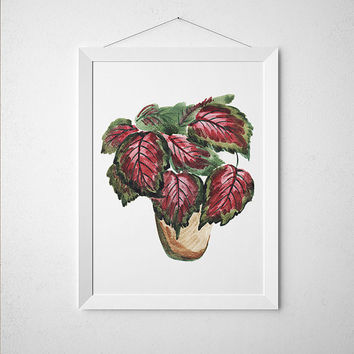 Potted plant art Watercolor print Botanical print Flower poster ACW643