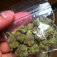 weed in a bag - Google Search