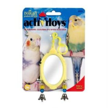 JW Pet Insight Activitoys Fancy Mirror