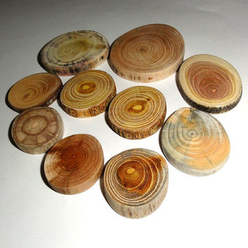 Rustic woodwork wood slices, jewelry supplies findings. 10 pcs various natural wood discs. Tree slice DIY, wedding, wall art, jewelry charms