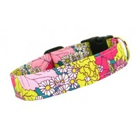 Buy Dainty Daisies Dog Collar | Online pink flower dog collar| Pawshaccessories.com