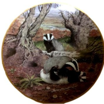 Vintage Franklin Porcelain Plate Peter Barrett's Playful Badgers In October