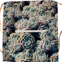 Succulents created by Leah Flores | Print All Over Me